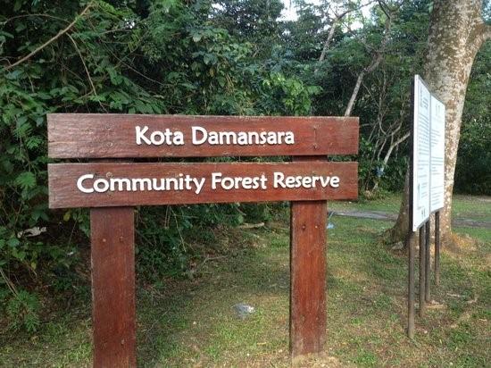 Image result for Hutan Simpan Komuniti Kota Damansara