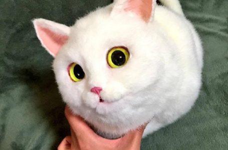 Macam Real Doh! Suri Rumah Hasilkan Beg Bentuk Kucing Realistik