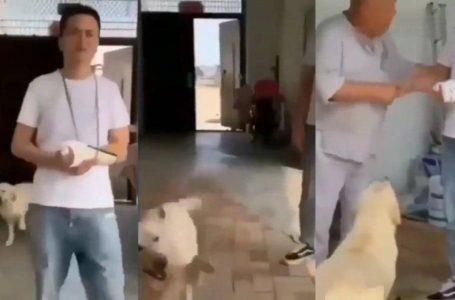 Mengundang Betul Perangai Anjing Ni, Inilah 'Menganjing' Yang Sebenarnya