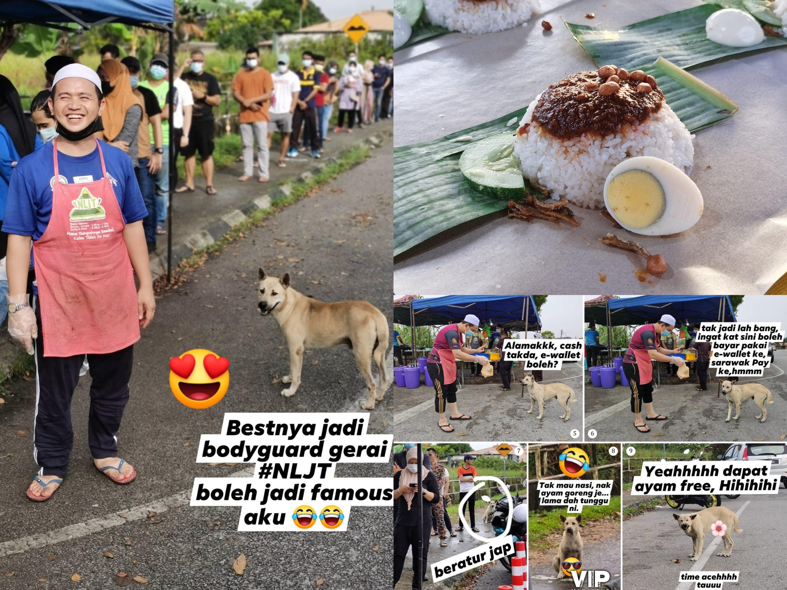 Penjual Nasi Lemak Viral Kerana Menolong Anjing Jalanan